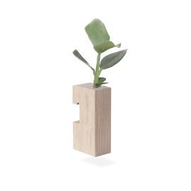 Wooden Plant Pot Flower Stick Soap Treated